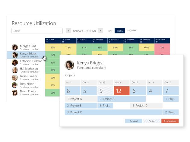 Microsoft Dynamics 365 Proje Yöneticisi